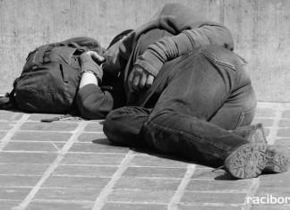 Bezdomny RACIBÓRZ