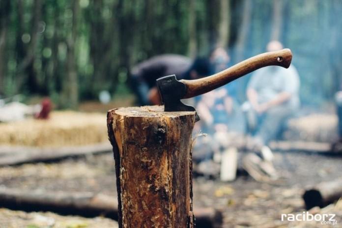 wycinanie drzew kom.
