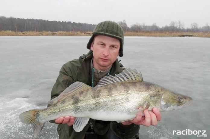 babiczok ryby podlodowe zawody wedkarskie