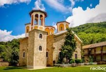 biblioteka raciborz markowice bulgaria