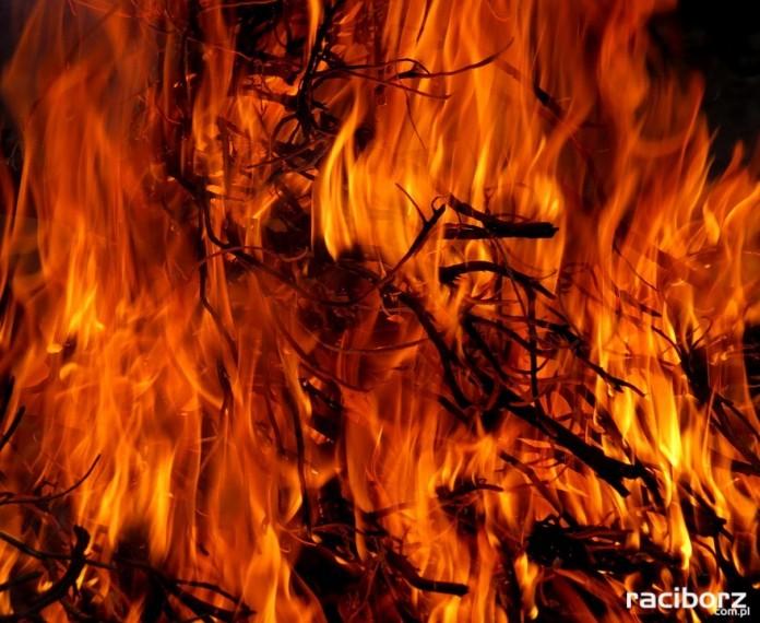 Pożar wypalanie traw Racibórz