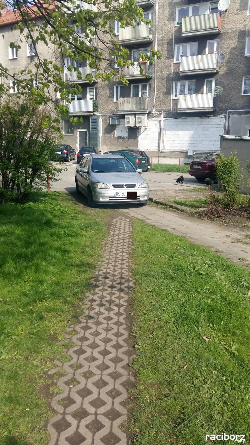miszcz parkowania