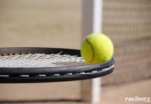 amatorska liga tenisa ziemnego raciborz