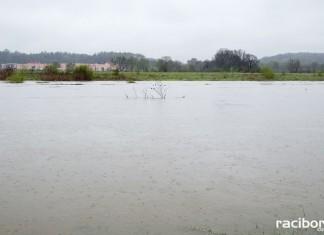 stan wody raciborz krzyzanowice chalupki