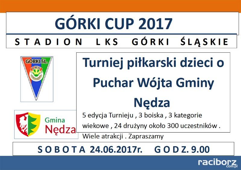 gorki cup 2017