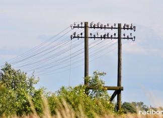 zabytkowa linia teletechniczka linia kolejowa nr 177