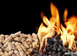 pellet biomasa piece gmina nedza
