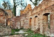 ruiny palacu w lubowicach