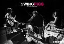 Racibórz, koncert: Swing Pigs & Madalena João