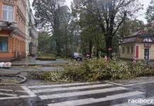 """Zniszczenia po """"Grzegorzu"""" będą usunięte do końca tygodnia"""