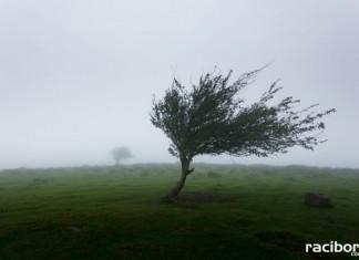 wiatr pogoda
