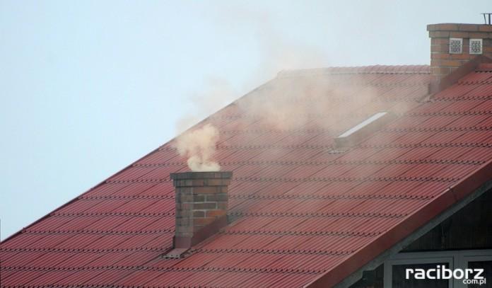 Smog przedszkolaki interpelacja Łęski