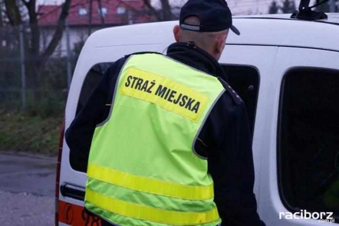 Raciborska straż miejska prowadzi kontrole palenisk