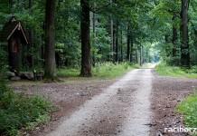 Ciekawe miejsca warte odwiedzenia w gminie Nędza
