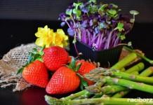 Warsztaty plastyczno-kulinarne w Pogrzebieniu