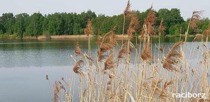 Łowisko Babiczok Gmina Nędza