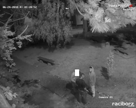 Krzyżanowice: Policja szuka świadków kradzieży rozbójniczej