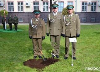 Dąb Niepodległości został posadzony na terenie Komendy Śląskiego Oddziału Straży Granicznej