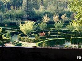 arboretum bramy morawskiej - wieża widokowa
