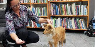 dogoterapia Klub Przyjaciół Biblioteki Ostróg