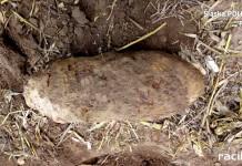 Bomba na polu w Krzyżanowicach