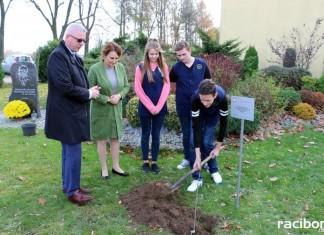 Sadzenie drzew w Kornowacu
