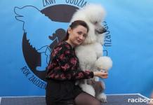Wystawa Psów Rasowych w Zakrzowie
