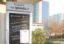 Społeczna lodówka Wodzisław Śląski