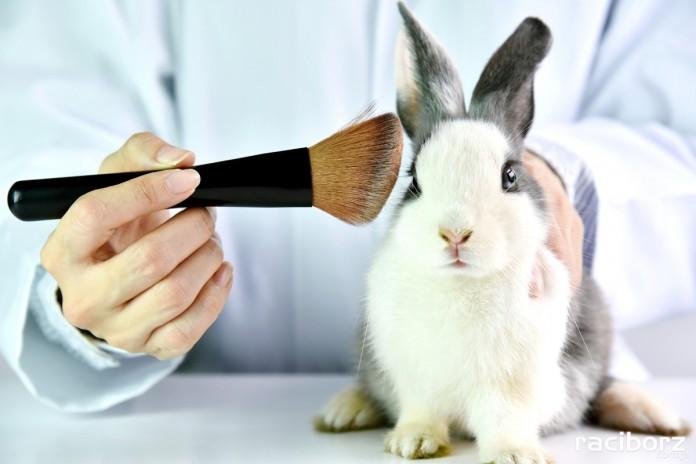 Koniec z testowaniem kosmetyków na zwierzętach!