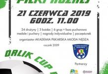 orlik cup nedza 2019