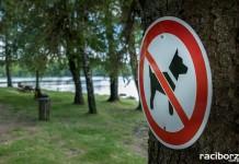 Zakaz wyprowadzania psów