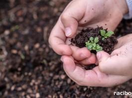 Edukacja ekologiczna dzieci i młodzieży