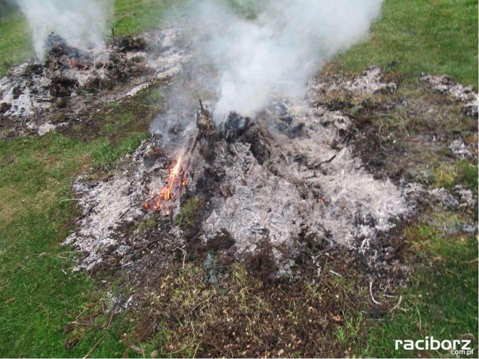 Spalanie odpadów zielonych