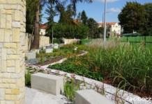 Rewitalizacja Ogródka Jordanowskiego w Raciborzu