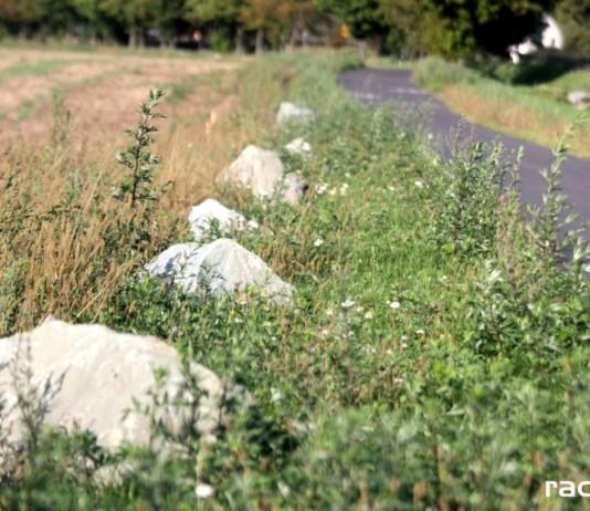 Ścieżka rowerowa prowadząca na Łężczok Fot. IK