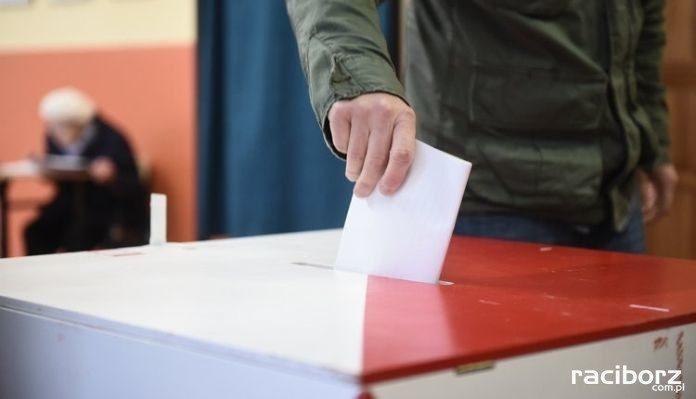 Wybory 2019