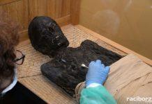 Mumia z raciborskiego muzeum przedmiotem specjalistycznych badań