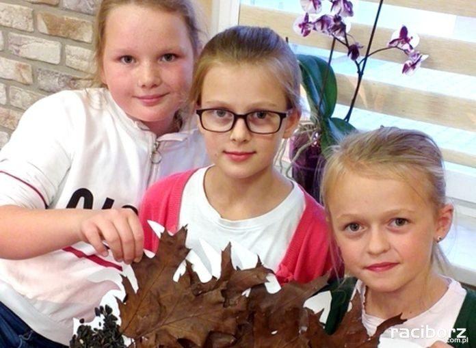 Złota jesień na zajęciach w gminie Kornowac