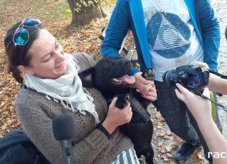Dziennikarze ze Strefy zachęcają do adopcji zwierząt