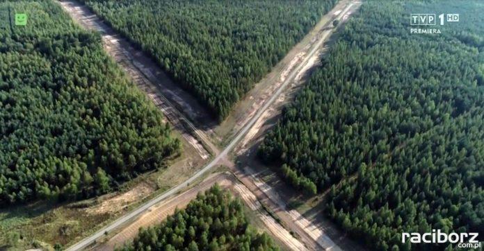 Rudzkie lasy program TVP