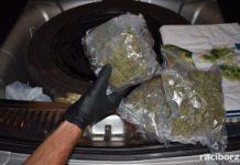 marihuana gorzyczki
