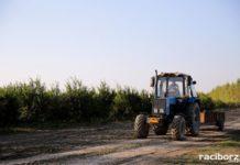 rolnictwo traktor