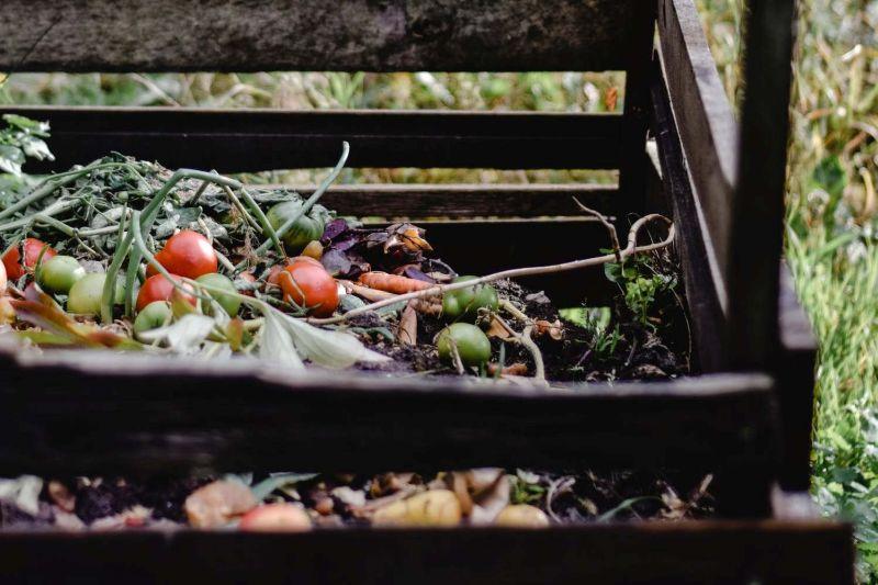 bioodpady kompost