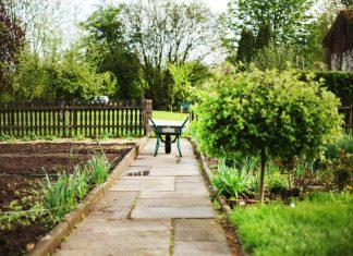 dzialka ogrod wiosna
