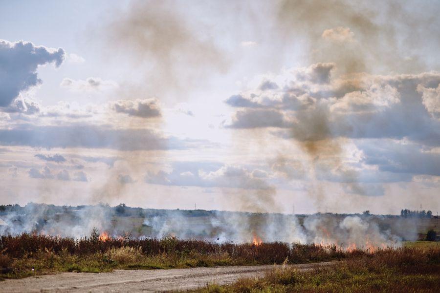pozar pole wypalanie traw