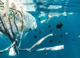 ekologia plastik woda