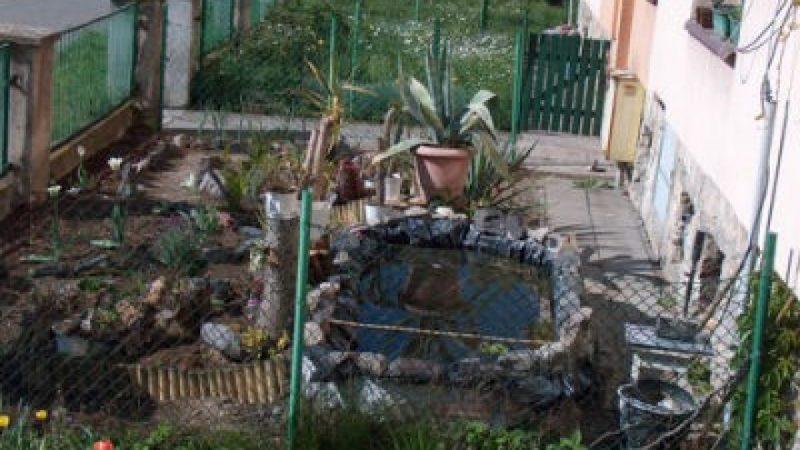 Raciborskie ogródki