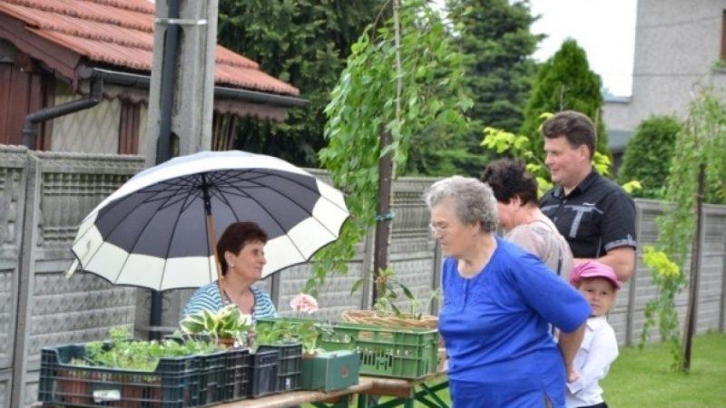 Festiwal Kwiatów w Tworkowie