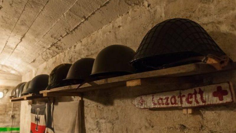 Wystawa w schronie miejskim w Wodzisławiu