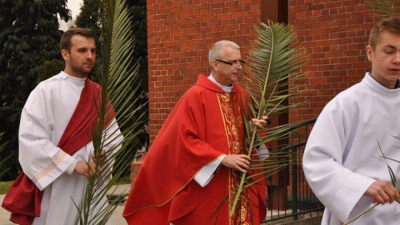 Jezus na osiołku wkracza do Jerozolimy - Niedziela Palmowa